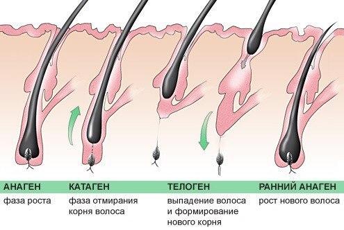 Неравномерно растут волосы после шугаринга